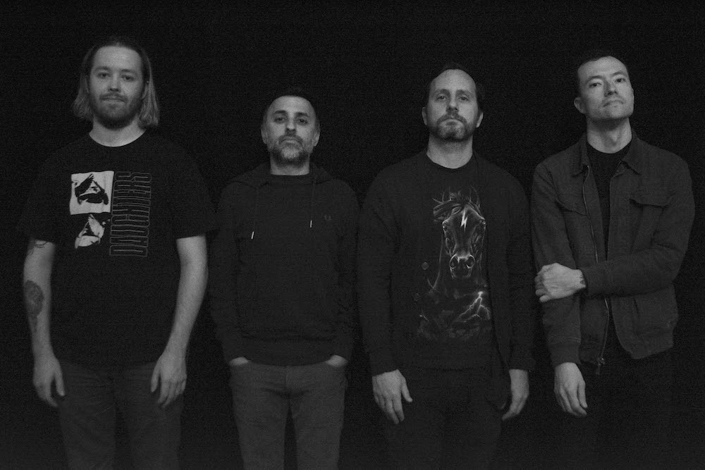 hesitation wounds 2019