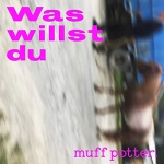muff potter cover